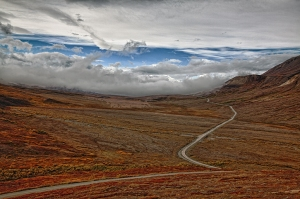 road in Denali
