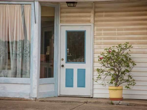 door-and-shrub