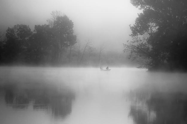 fog-9913