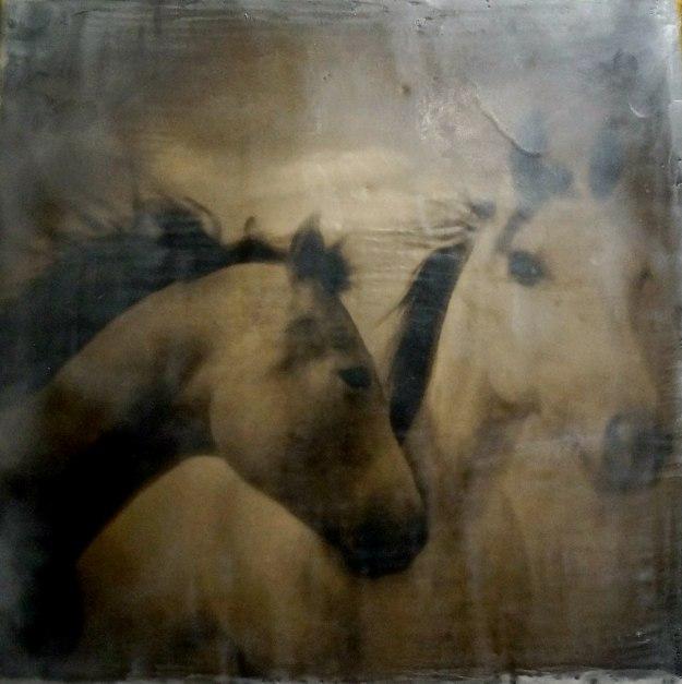 """Jenny and Jack"" © Amanda Smith"