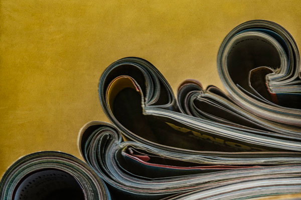 """""""Reading Material"""" © Sue Henry"""
