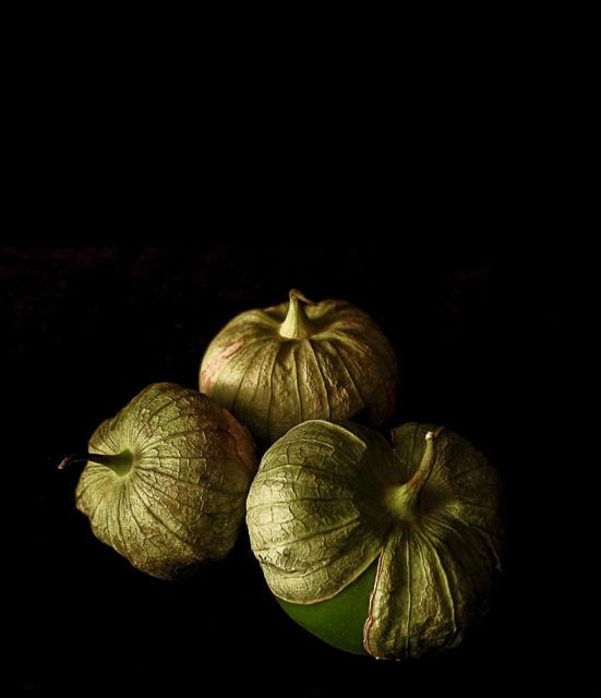 Burr_Green-